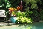 Andover Bali style landscaping 11
